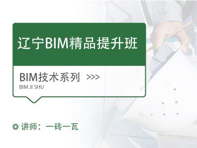 (遼寧)BIM精品提升班